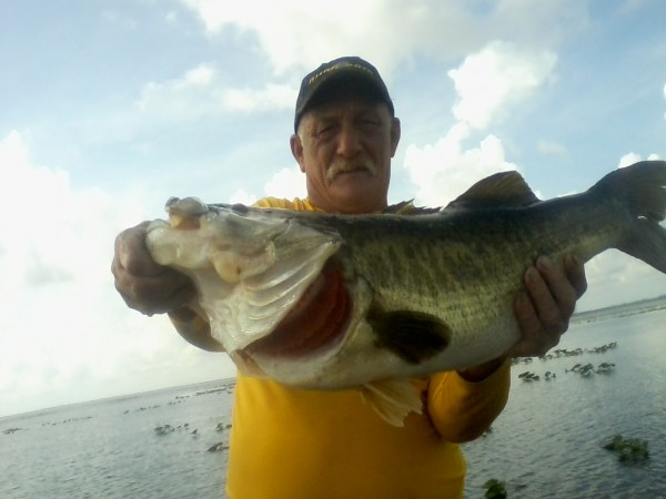 Fla record bass released smallmouth largemouth bass for Bass fishing tournaments in florida