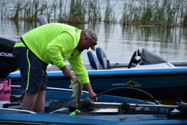 Sumter s last stand big fish bass tournament gallery for Fishing tournament scales